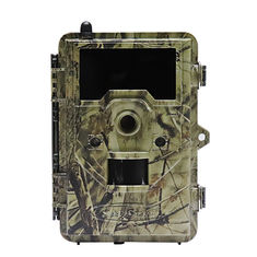 China 2.4 inch color display Outside Wild Game Infrared Trail Hunting Camera , CE / ROHS / FCC Approvals supplier